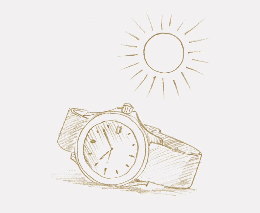THE WATCH AND ITS DOCUMENTS
